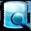 Net Database Scanner